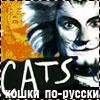 Кошки по-русски